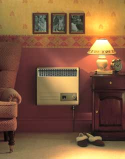 Valor Brazilia F5S Balanced Flue Gas Wall Heater